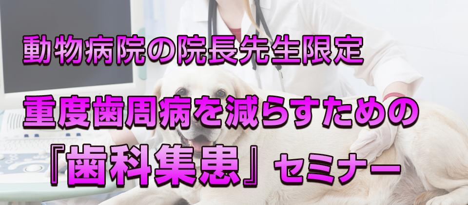 【webセミナー】歯科処置10件/月達成のための集客セミナー